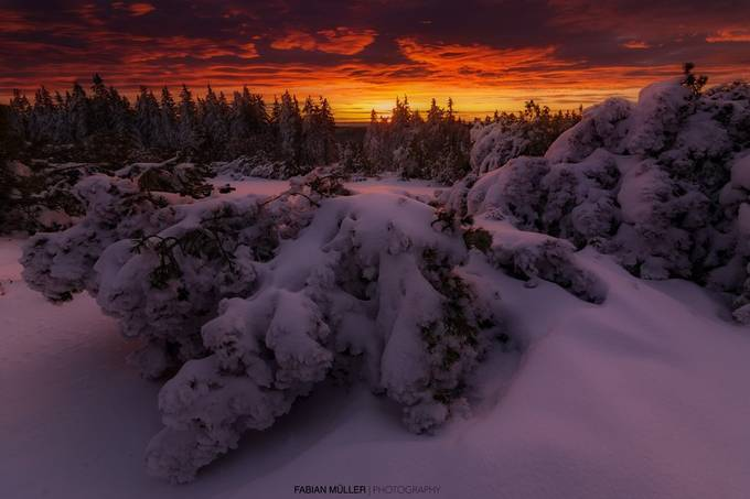 Morning Fire by fabianmueller - The Beauty Of Nature Photo Contest