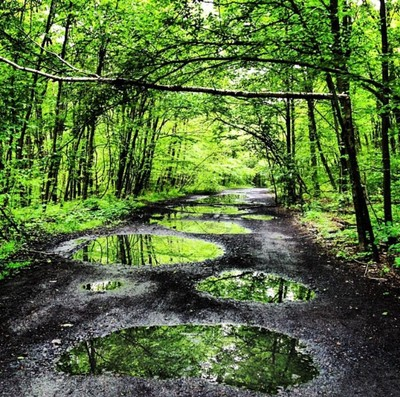 Rain day walk at centralia