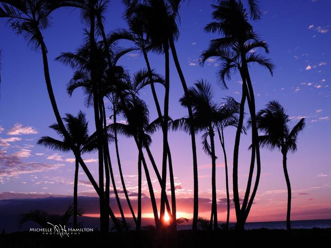 Ka`anapali Sunset by mahamilton - Palm Trees Photo Contest