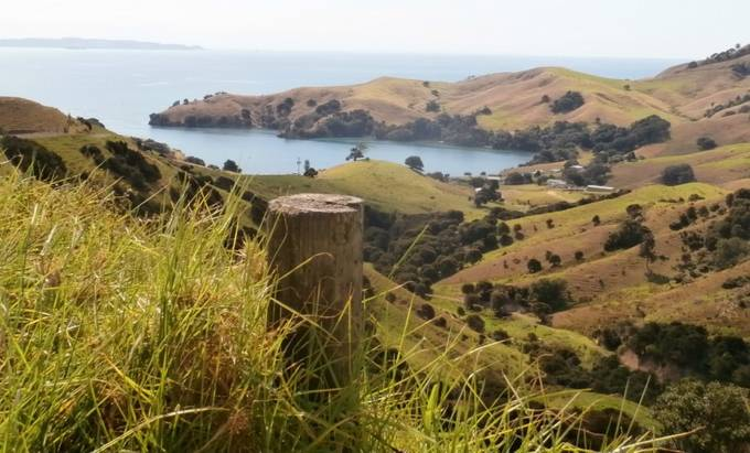 The drive up to the Coromandel, on the North Island of New Zealand, is breathtaking. There are many stunning views like this to enjoy on the way.