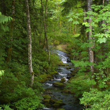Nanaimo creek