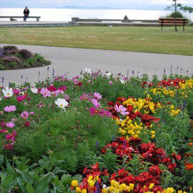 Parksville Park Vancouver Island