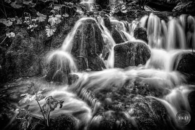 Through the silk streams
