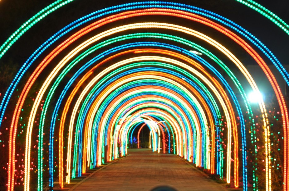 Ahmadi February Lights - Kuwait