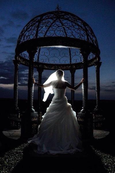 Back lit Bride