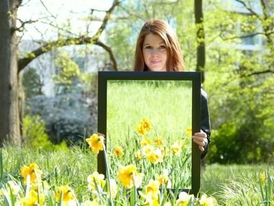 Spring Mirror Daffodils