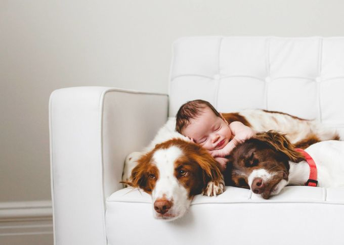 Co-Exist by FotoflyStudio - Pets With Character Photo Contest