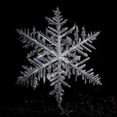 James A. Rinner Snowflake 2015 008