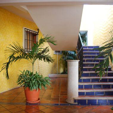 AKUMAL, MEXICO -  2010