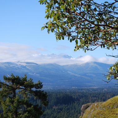 From the top of Little Mountain in Parksville, BC - Feb 4, 2014