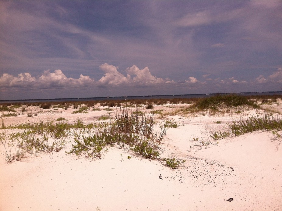 Fishing trip at Fort Pickens