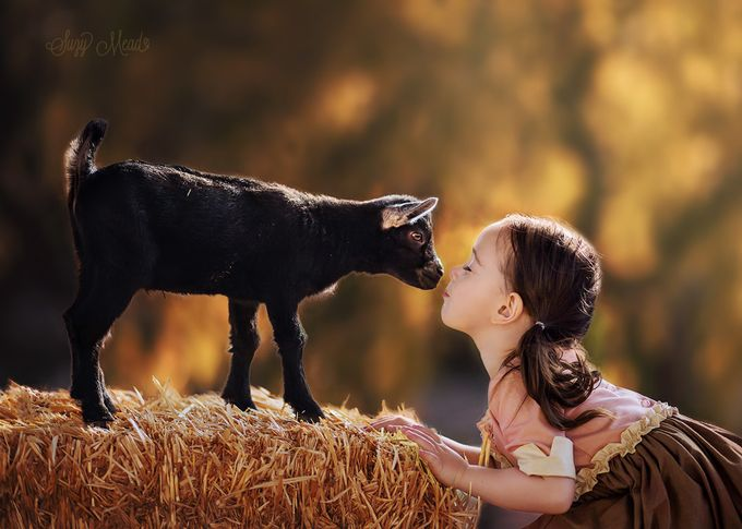 Kisses for Kids by suzymead - Farms And Barns Animals Photo Contest