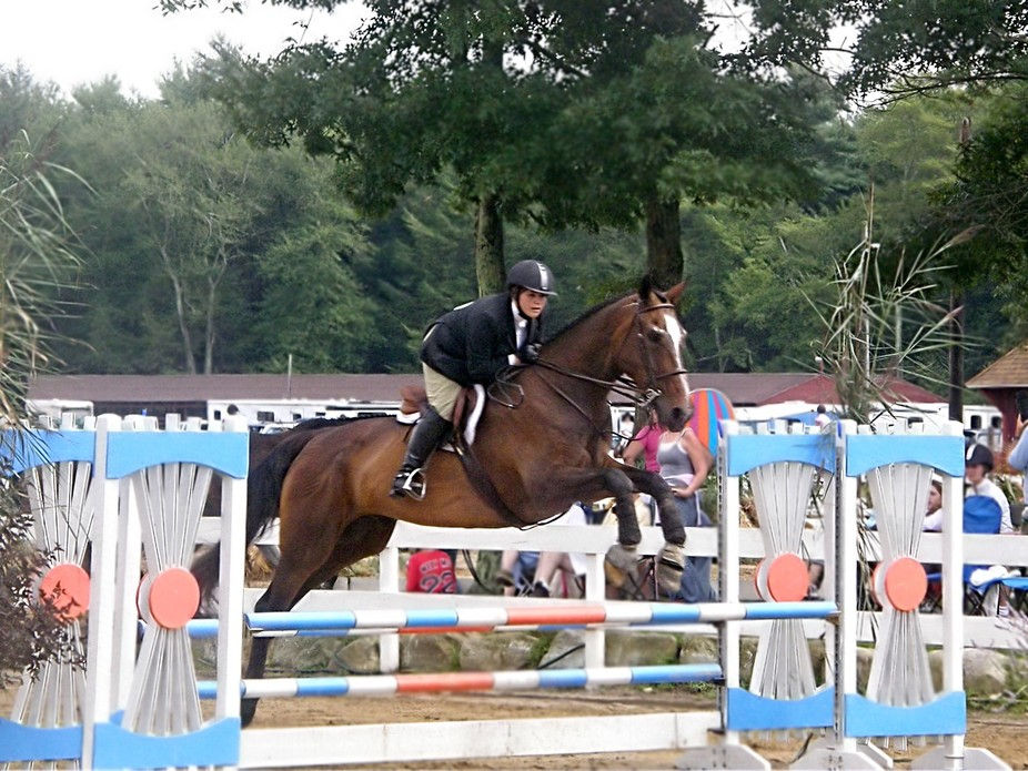 While photographing a local Equestrian event, I noticed this rider and her horse making a superb ...
