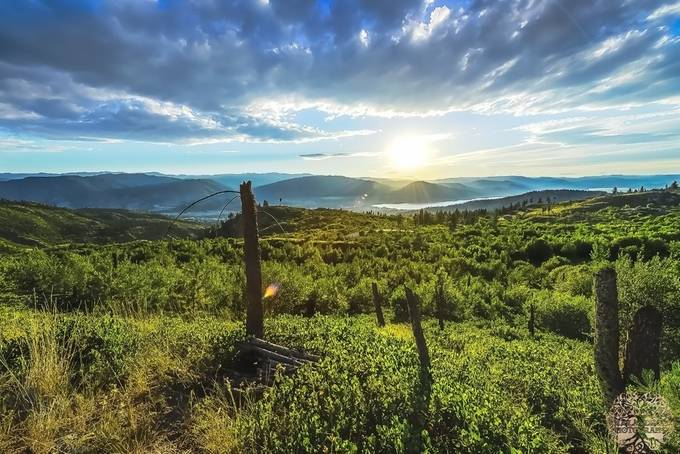 Summer Sun on the Hill by douglasdrouin - Meadows Photo Contest