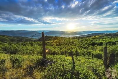 Summer Sun on the Hill