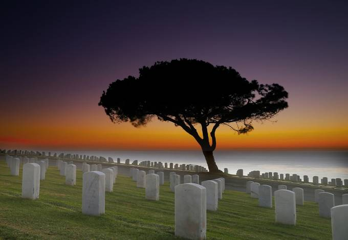 Fort Rosecrans National Cemetery in San Diego. by larrymarshall