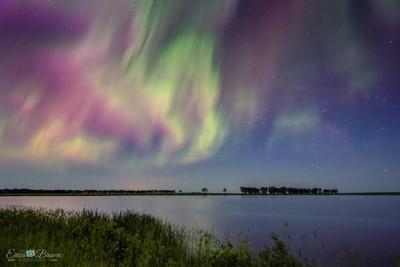 Northern lights over a North Dakota slough.