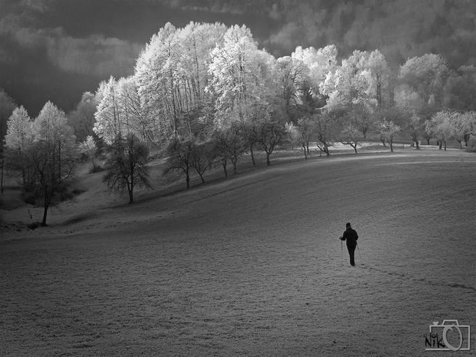 DSCF4335 by nikosladic - Take A Stroll Photo Contest