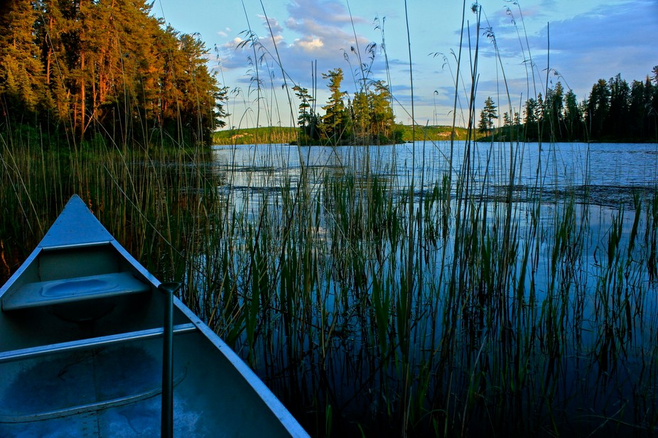 Evening hues filter into the bay as I listen to sounds of nature in Canada's canoe wilde...