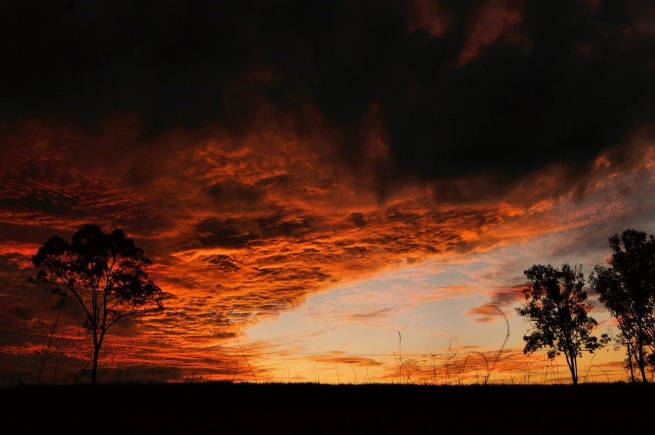 A striking sunset taken from lying down in our paddock