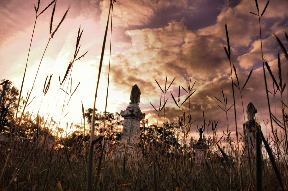 A small old cemetery late in the day - a bit overgrown with grass but that became a compositional...