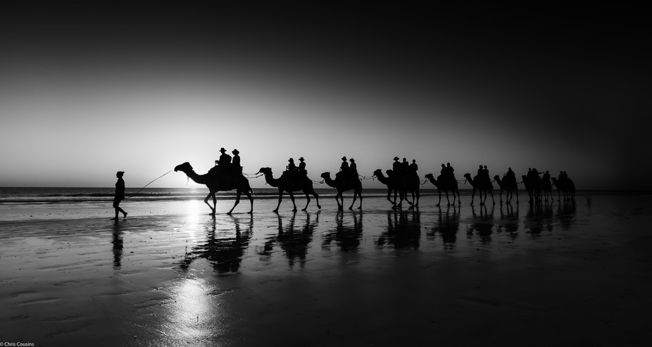 Broome - Cable Beach Camels