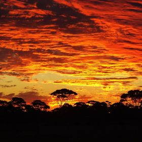 Coolgardie in WA Australia has many glorious sunsets - hard to choose only a few to share!