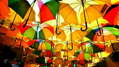 Umbrellas Aligned