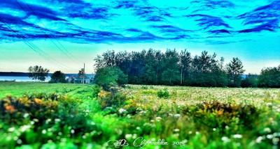 PicsArt_1429903593680