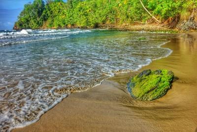 Hidden Gem in Trinidad and Tobago July 15