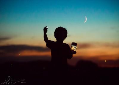 Catching fireflies in the moonlight