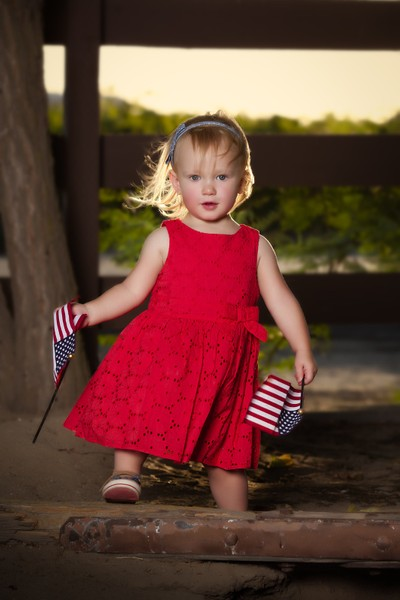 Beautiful Patriotic Toddler Holding Flags