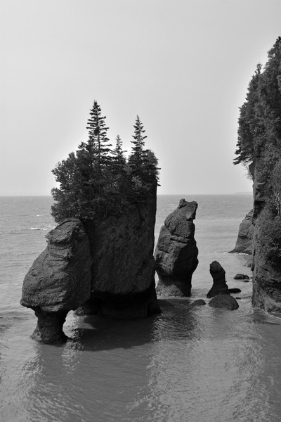 Hopewell Rocks Pot rocks