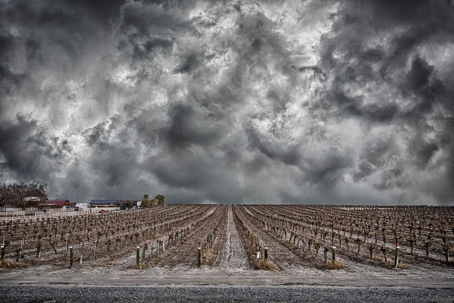 This is actually a composite image. The vineyard was photographed with a Sony RX100 II, set on th...