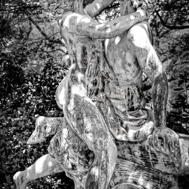 The Mount Wilson Collection - (7) The Lovers in Black & White