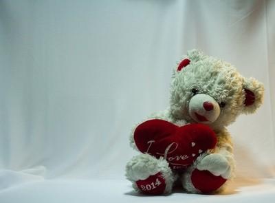 Teddy with split lighting