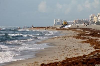 Beautiful Beach Morning ~