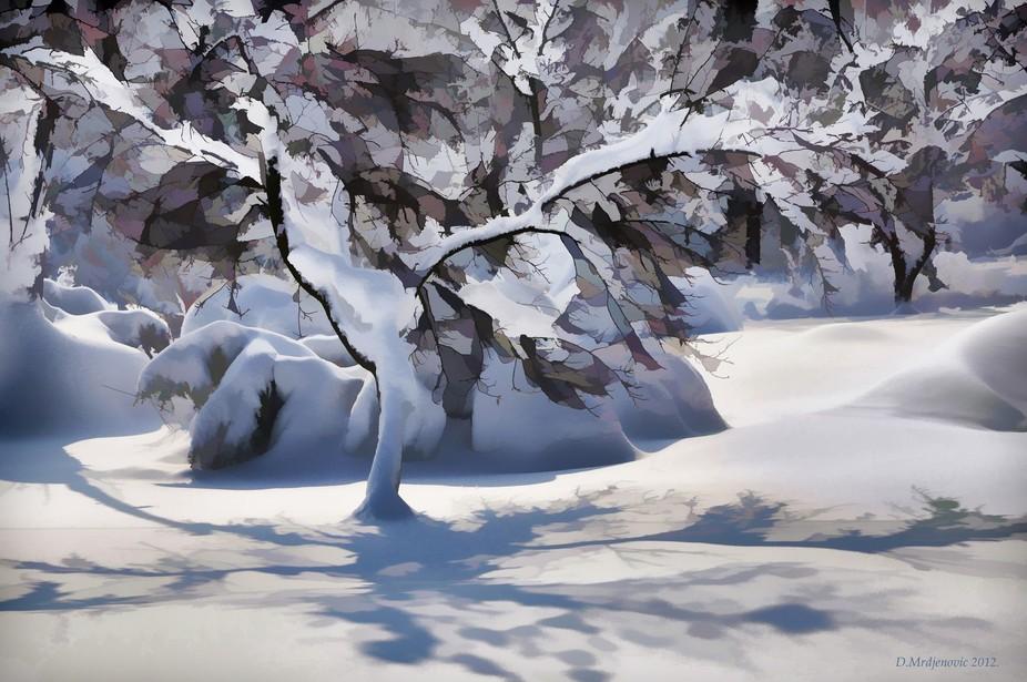 Winter on Tresnja