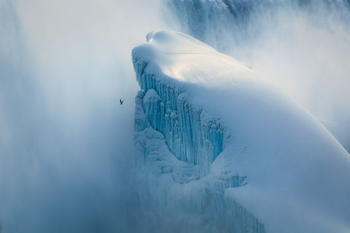 Engulfed by clifffawcett - Image of the Year Photo Contest by Snapfish