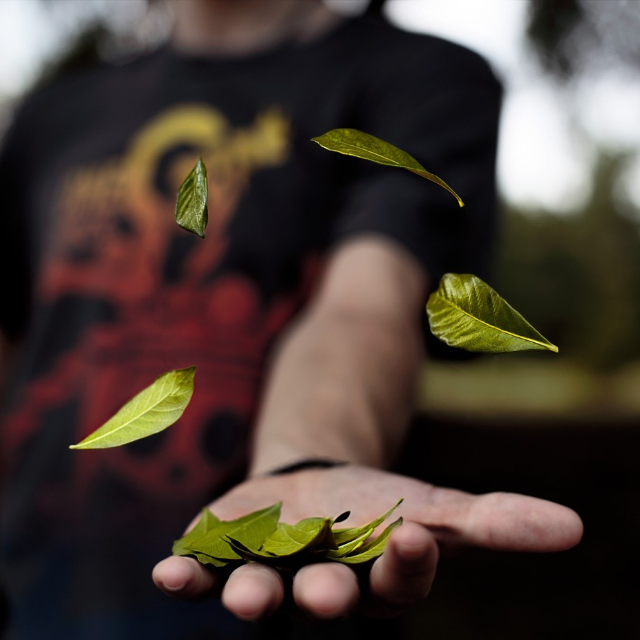 Nature in Hand by KingRuss - The Four Elements Photo Contest
