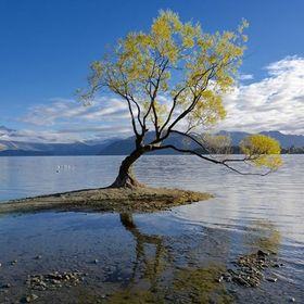 Lake Wanaka  Central Otago, New Zealand