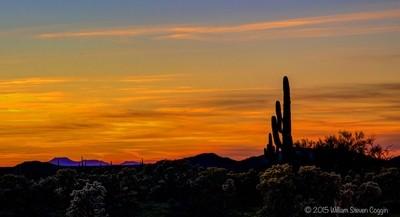 Sunset Over Sonoran Desert