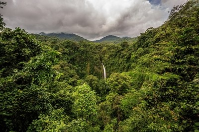 Jungle Waterfall in Costa Rica