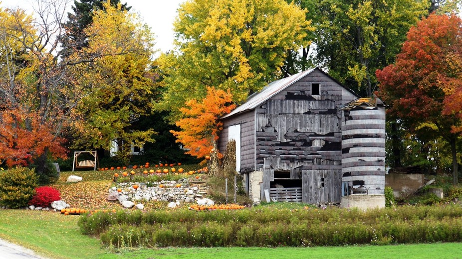 grey barn and pumpkins for sale