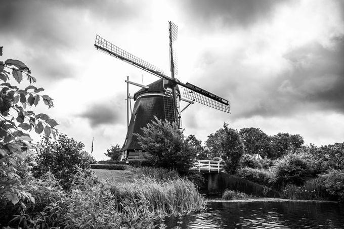 EUROPA 2013 057A by eduardofloresPhotography - 200 Windmills Photo Contest