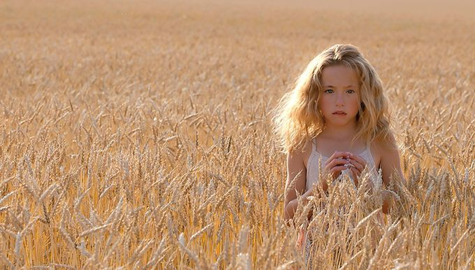 Wheat Field by klang - Lost In The Field Photo Contest