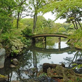 An idyllic setting amongst the trees in the beautiful Rikugien Gardens within Tokyo, Japan.