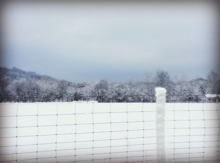 winter100