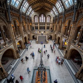 The natural history museum London.