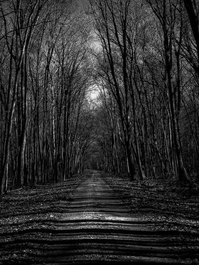 Amethyst Road in B-W